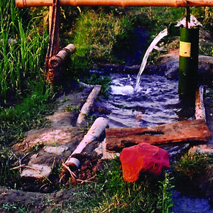 Bamboo Treadle Pump, 2006