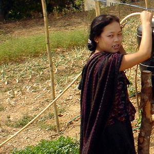Drip Irrigation System, 2006