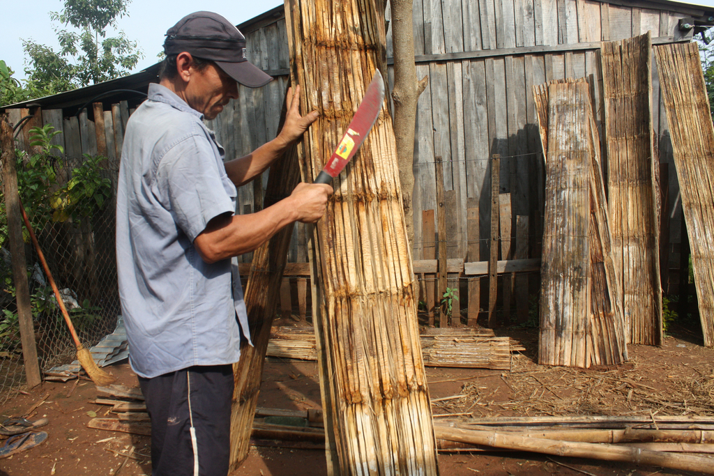 Bamboo (Tacuara) Loofah Panels, 2008–11