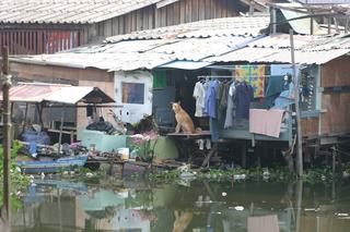 Bang-Bua Canal Community Upgrading