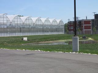 Evergreen Cooperatives, 2008–present