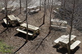 Fallen Fruit Public Picnic Tables, 2012