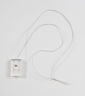 Clear rectangular acrylic pendant containing a fly and a pearl, suspended from a chain. Case: fake fur, leatherette, cardboard