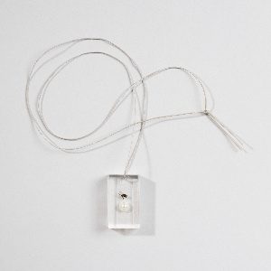 "Clear rectangular acrylic pendant containing a fly and a pearl, suspended from a cord. Flat, white rectangular tri-fold case composed of leatherette embossed with the name ""fred"", cardboard, artificial fur interior."