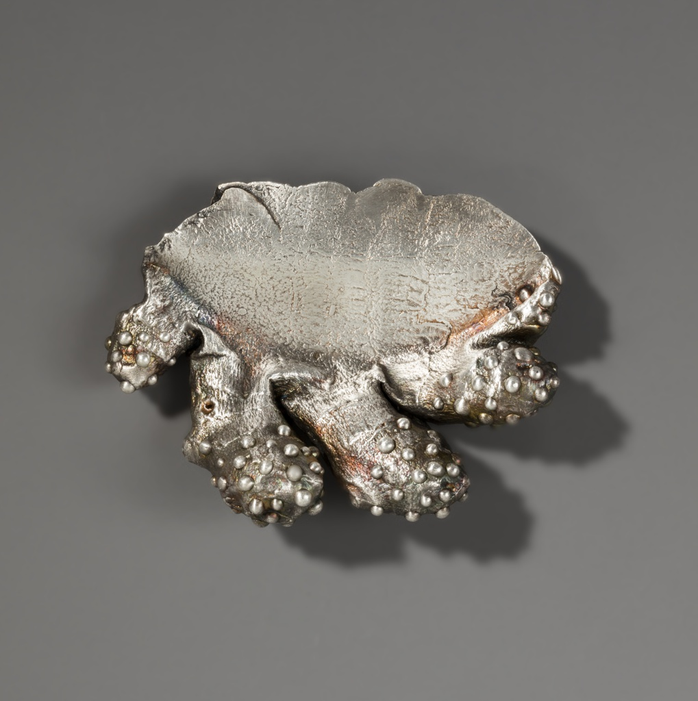 Silver brooch in the form of a ginger root with irregular border and protrusions along the bottom including cusps and spherical bumps.