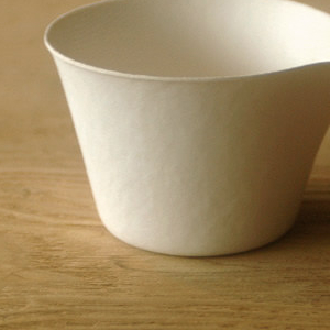 WASARA Tableware Coffee Cup, 2008