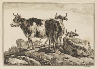 """Print, Plate 6, from """"Cahier de Six Feuilles de Boeufs et Vaches"""" , 1771"""