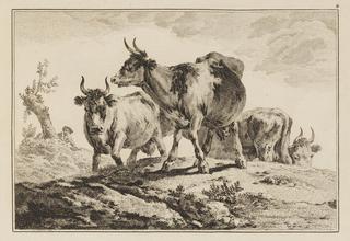"""Print, Plate 4, from """"Cahier de Six Feuilles de Boeufs et Vaches"""", 1771"""