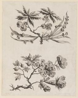 "Print, Flower Boughs from, ""Recueil de Fleurs Chinois"", 1760"