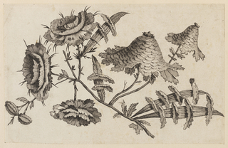 "Print, Flower Bough, from ""Recueil de Fleurs Chinois"", 1728-1808"