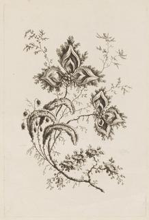 "Print, Flower Branch, from ""Fleures Persannes"""