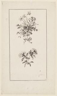 """Print, Flowers Boughs, from """"Divers Bouquets d'Aprés Nature"""", 1728-1808"""