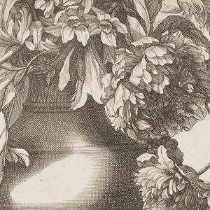 Book, Le Livre de toutes sortes de fleurs d' apres nature