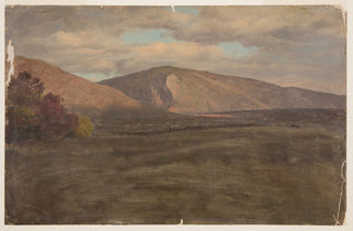 Horizontal image of an autumn landscape with a background of a mountain and to the left an autumn tree.  Cloudy skies above.