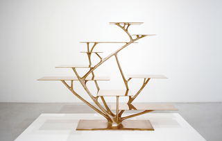 Bookshelf, Branch, 2010