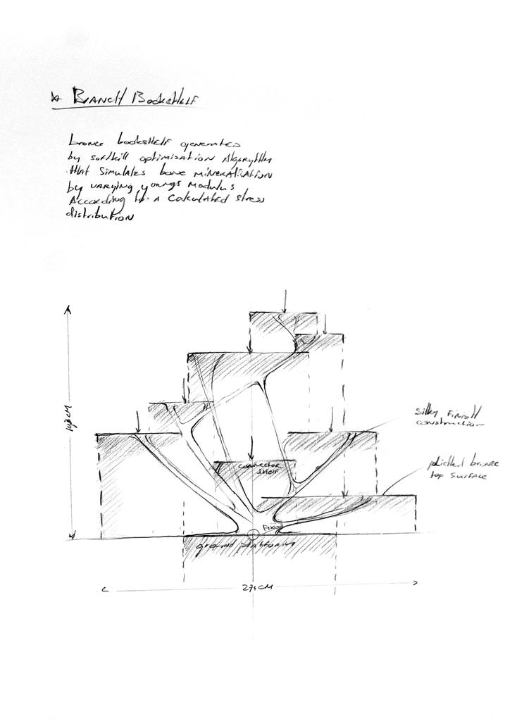 Sketch, Branch Bookshelf, 2010