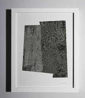 On white ground, abstract geometric print in black and gray tones. Printed area full of dense imagery that resembles a microscopic view of small irregular rounded elements, many with a black or white center and contrasting exterior.