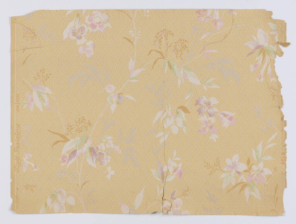 "Vining floral design. Floral and foliate motifs, in pastel colors, with mica tendrils. Printed on background of all-over foliate patterning, on ungrounded paper. Printed in selvedge: ""Light Resisting / B 198 3""."