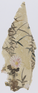 a) Small brown heron with white undersides alighting amidst blue and pink blossoms; b) Two pink-flecked white, six-petal lilies with leaf spray; c) Three blue water Iris at pond's edge. Blue-gray leaves at base of flowers; d) Sandhill crane among blue and orange blooms, mostly lilies; e) Twin sprays of pinkish-white flowers at edge of a marsh.
