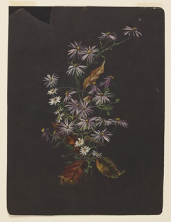 A painting depicting an autumn bouquet of daisies, asters and autumn leaves on black paper.