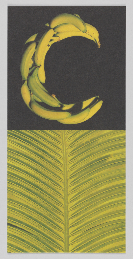 """In upper center, image of bananas form """"C"""" shape against. In lower center, image of large green leaf against yellow background. On verso, """"Cocomalayo"""" rotated counter-clockwise and printed in green ink at center. DIFFA Chicago information in upper left with post stamp at upper right."""