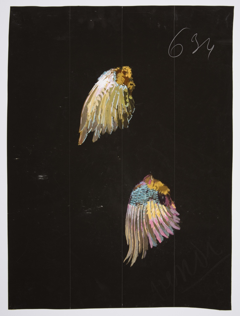 Two bird wings with multi-colored feathers on a black ground. The wings at the top consist of yellow, brown, pale pink, pale blue, and white. The bottom wings contain the colors pink, blue, yellow, brown, white, and black.
