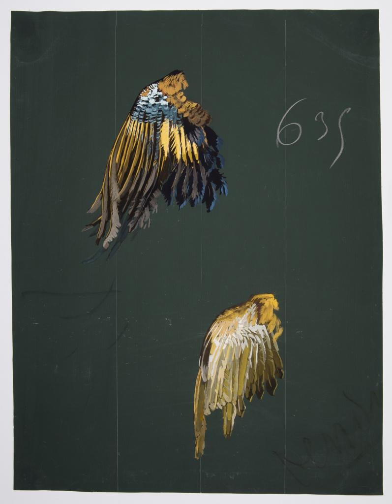 Drawing, Textile Design: Bird Wings