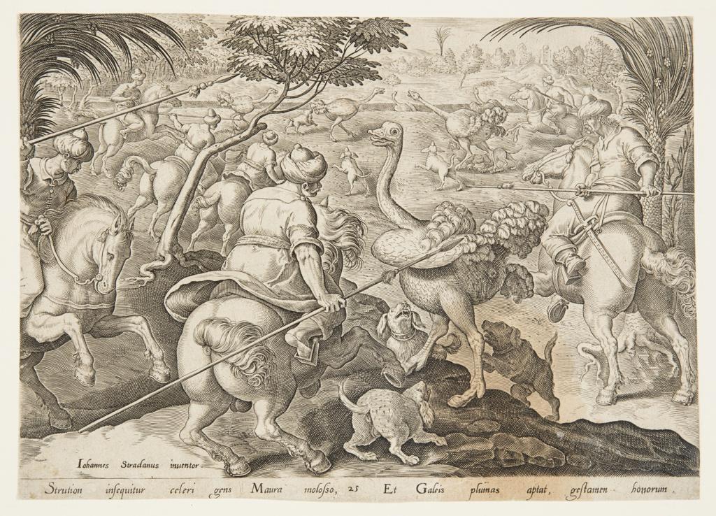Print, The Ostrich Hunt