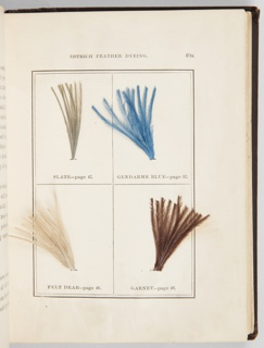 Book, The Practical Ostrich Feather Dyer, 1888