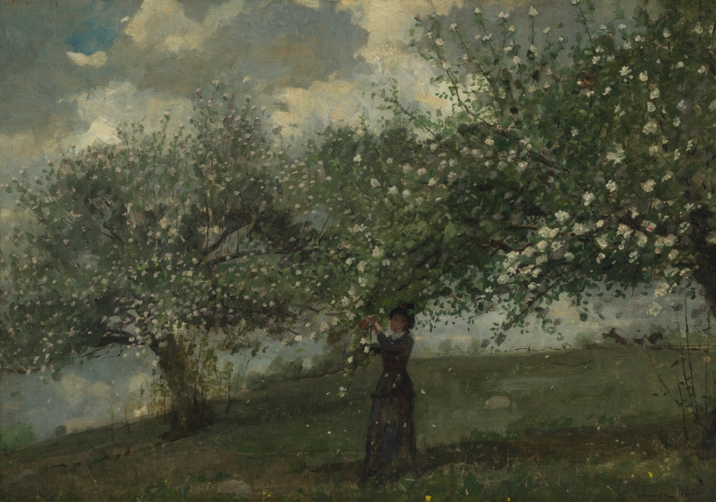 Painting, Girl Picking Apple Blossoms