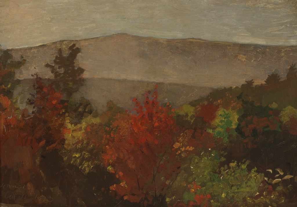 View showing tree-tops in foreground, some in autumn foliage, with a range of greyish hills beyond a valley and intermediate hill.