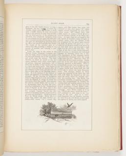 Ephemera, Dickie, Illustration for Scribner's Monthly (XVIII, No. 5, September 1879, p. 653)