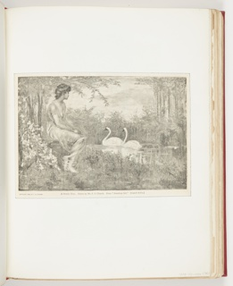 Left, profile of woman sitting, looking at two swans swimming in pond; center, two white swans facing left, swimming. Vegetation throughout.