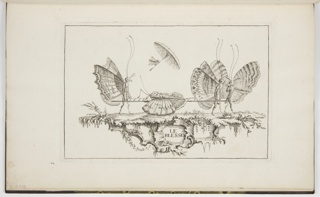 "An injured butterfly is shown lying in the middle of a stretcher carried by two butterflies (one on the left and one right). Another butterfly walks beside the butterfly carrying the stretcher on the right. A small butterfly with a parasol or umbrella flies above the injured butterfly. The area underneath the ground they walk on is shown at the bottom of the composition, and the words ""LE BLESSÉ"" are printed in black at the bottom center."