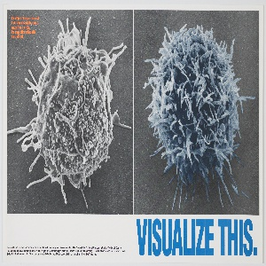 Poster for the Gay Men's Health Crisis that features a black and white photograph (tinted blue) of a normal T-cell on the right alongside a black and white photograph of an HIV-infected T-cell. Printed in large blue text, lower right, lower margin: VISUALIZE THIS.