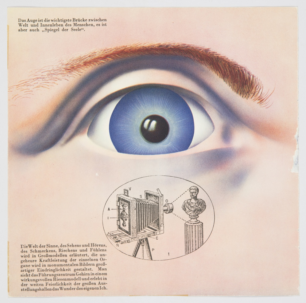 """Page from the booklet for the exhibition, """"Das Wunder des Lebens"""" (""""The Miracle of Life""""). The page contains a close-up of a person's eye. The eye is blue, with a reddish-brown eyebrow above. Directly below, an illustration printed in black of what appears to be a camera obscura appears inside an oval. German text printed in black appears at upper left and lower left. Verso: An array of gold objects that appear to be models explaining the cell division of organisms and their shadows appear against a purple background. German text printed in black appears at upper left."""