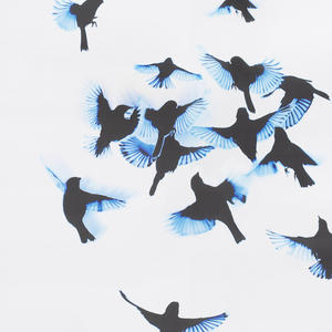 "Composed of two panels ""Indi"" captures the spontaneous action of a flock of black birds in motion.  The main cluster of birds is near the center of the panel height.  The photographically-captured image is printed in black with blue highlights on a white textured ground."