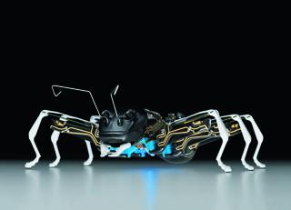 Bionic ANT, 2018