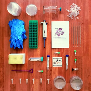 DIY Bacterial Gene Engineering CRISPR Kit, 2015-ongoing