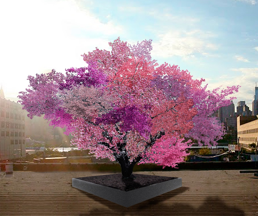 Tree of 40 Fruit, 2008-ongoing