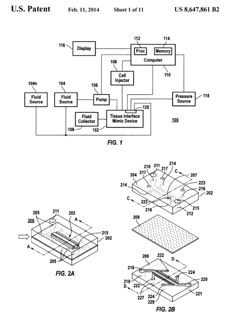 Digital Print, U.S. Patent for Organ-on-a-Chip, 2014