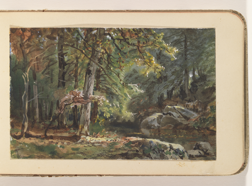 Forested interior with tall trees left. Stream foreground right and rocks and dense pines on right bank.
