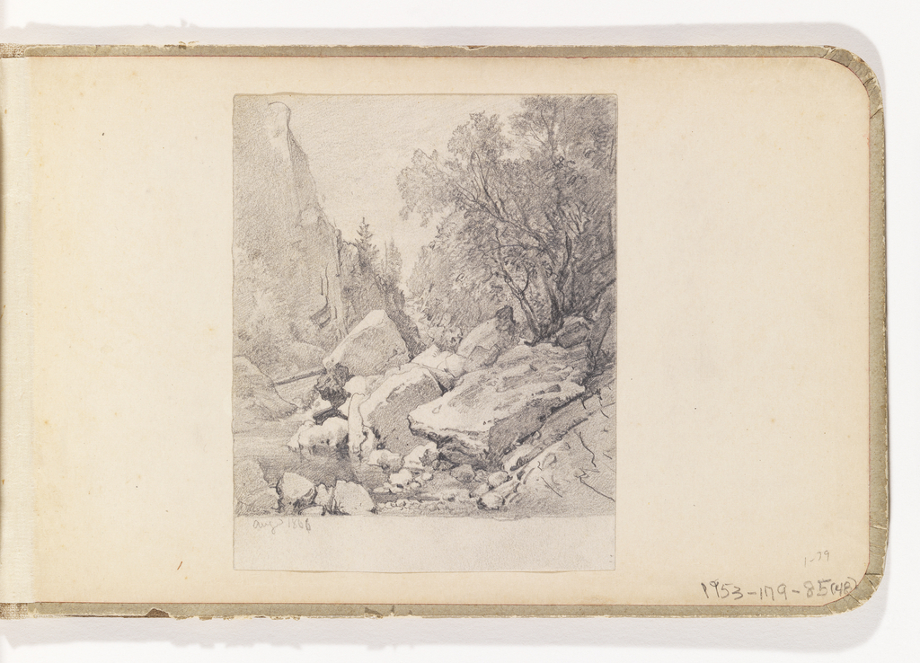 View of creek between cliff at left and tall trees at right with large rocks in foreground.