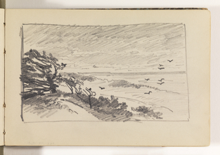 Sketchbook Folio, Beach Study of Trees in Wind and Birds