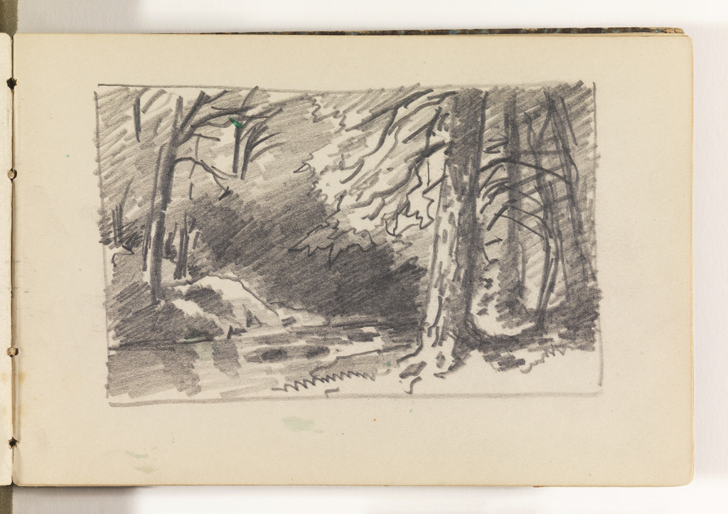 In right foreground, a large tree with three smaller trees farther back, in shadow. To left of large tree, a stream in left foreground. Across stream on opposite bank, rocks and more shaded trees.