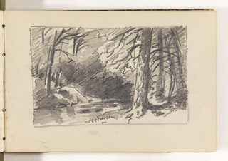 Sketchbook Folio, Stream Framed by Large, Dark Trees