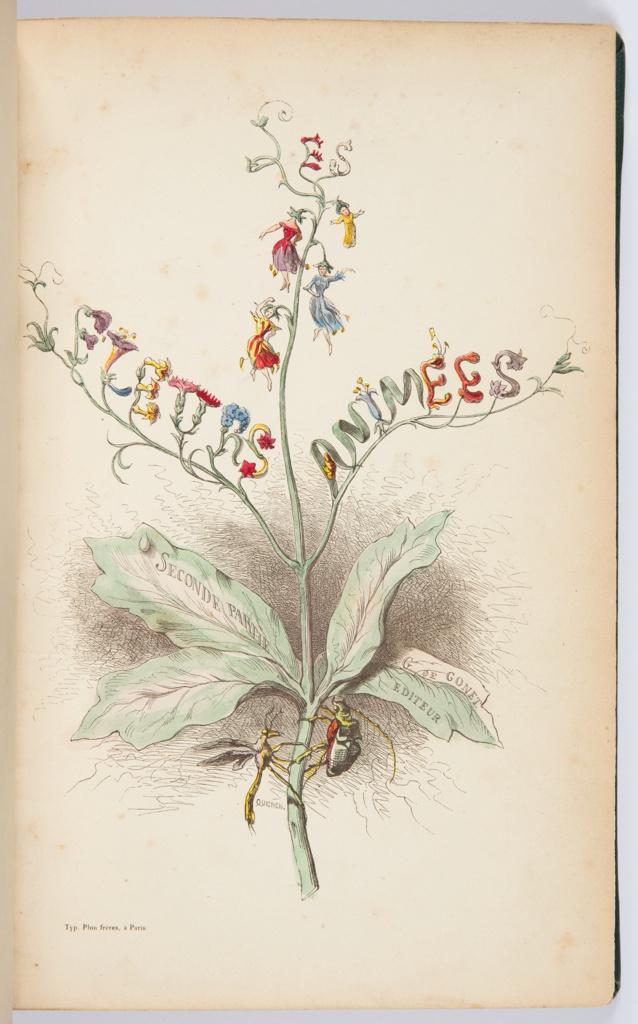 Les Fleurs Animees, Vol 2, 1847