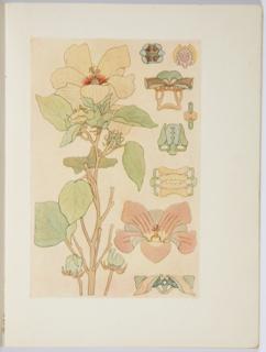 The Use Of The Plant In Decorative Design, Book, ca. 1912