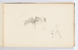 Sketch of two cows grazing.