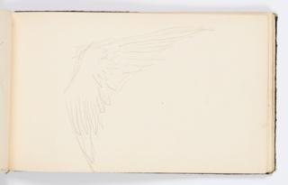Sketchbook Folio, Sketchbook Page: Wing